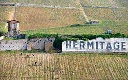 hermitageWEB wine grapes u20 syrah st joseph rhone napa grenache carneros cabernet franc