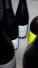 hiding winesWEB wine grapes
