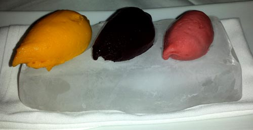 Saddle Peak Sorbet served on ice block